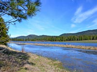 Great opportunity to own 48 buildable view acres with approximately 2800 feet of frontage on the beautiful HooDoo Creek near Priest River Idaho