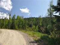 If you are looking for some acreage, close to town, this is a must see. Don't miss this 5.65 acre parcel