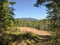 Beautiful property with plenty of building sites. Views of Schweitzer and Selkirk Mountain range in Sandpoint, Idaho